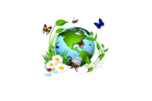organisms&environments-01